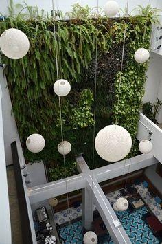 Jardines verticales, plantas que dialogan con c...