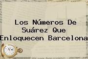 http://tecnoautos.com/wp-content/uploads/imagenes/tendencias/thumbs/los-numeros-de-suarez-que-enloquecen-barcelona.jpg Barcelona. Los números de Suárez que enloquecen Barcelona, Enlaces, Imágenes, Videos y Tweets - http://tecnoautos.com/actualidad/barcelona-los-numeros-de-suarez-que-enloquecen-barcelona/