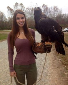 """""""In Canada, we have some nice falcons."""" by OlonJohnson in pics - Imgur"""