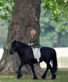 89-летняя Елизавета II показала стройные ноги (фото) - Звезды -