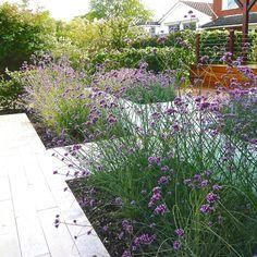 Riverside Garden by Berkshire garden designer Joanne Alderson Design Riverside Garden, Garden Inspiration, Garden Ideas, Modern Landscaping, Landscape Architecture, Garden Plants, Garden Design, Gardening, Planting