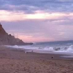 Camping Sycamore cove