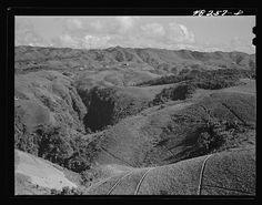 Comerio (vicinity), Puerto Rico. Landscape