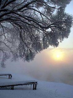 Winter's glow.......lovely