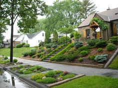 Landscaping for sloped front yard with steps