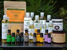 Comprehensive Comparison of Essential Oils, by Brand, with Pros & Cons List, from WellnessAppliances.com