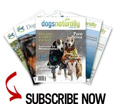 In Part 1 of this articleI introduced the Whys and Benefits of dog massage. Here I'll follow up with mythree favorite basic and effective moves you can do for your dog. Putting the Moves On Your Dog You probably already do some version of these moves subconsciously. That's because your dog guides you. You just …