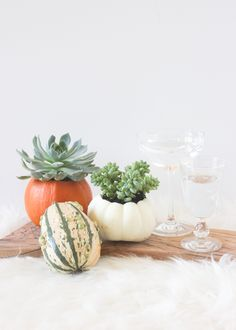 This super simple DIY pumpkin vase with succulents is totally going on the to-do list. How adorable!
