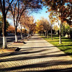 Kayseri Airport Street Four Square, Sidewalk, Walkway, Walkways
