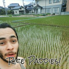 During my time in Kanazawa and the surrounding areas I was surprised to see the amount of rice paddies spread across the area. That along with the traditional upkeep that Kanazawa represents creates a truly unique atmosphere. - #japan #ilovejapan #kanazawa #kanazawacity #kanazawatrip #kanazawa2016 #japantravel #traveljapan #japantrip #japan2016 #ishikawa #ricepaddies
