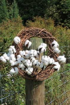 SHIPS FREE 5 12 Natural Cotton Stems Natural by TheWreathShed