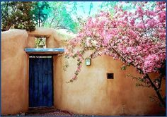 Spring in the Southwest  Walls of interior courtyard