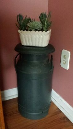 Milkcan and succulents in old container from goodwill. ..