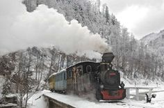 Take a ride in the oldest steam powered train in Romania, the Mocanita. FYI - The Mocanita inspired us, and became our logo, hence the Next Stop, Romania! Romania Travel, Old Trains, Tourist Places, Train Tracks, Places To See, World, Busses, Steam Locomotive, Alice