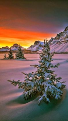 Top Ideas For Sunset Photography Nature Winter Scenes Winter Photography, Landscape Photography, Nature Photography, Winter Sunset, Winter Scenery, Winter Pictures, Nature Pictures, All Nature, Winter Beauty