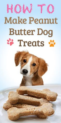 Homemade Dog Food See this Tutorial on How to Make Peanut Butter Puppy Treats, Diy Dog Treats, Puppy Food, Healthy Dog Treats, Dog Biscuit Recipes, Dog Treat Recipes, Dog Food Recipes, Homemade Dog Cookies, Homemade Dog Food