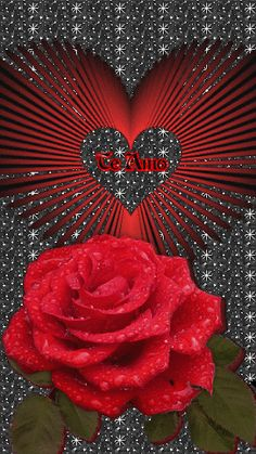 Latest animation I made using this beautiful rose image Love Heart Images, Love You Images, Rose Images, Heart Pictures, Beautiful Rose Flowers, Flowers Gif, Beautiful Flowers Wallpapers, I Love You Honey, Love You Gif