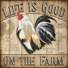 Life is good in the hen house
