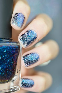 Ice House ILNP Spring Collection