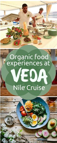 Our European trained chefs can provide you with any kind of gluten free, vegetarian or vegan diet. More inspirations about our Veda Nile Cruise unique food service here: Unique Recipes, Organic Recipes, Vegan Recipes, Green Organics, Visit Egypt, Gluten Free Diet, Natural Cleaning Products, Food Service, Africa Travel