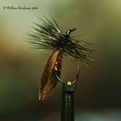 Caddis double wally wings #14 By William Ensiferum