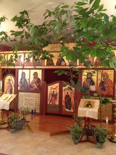 Why we have green and trees for Pentecost - from Fr.Stephen's Glory to God for All Things blog.