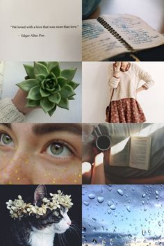 INFJ Aesthetic - a little weird, I guess, but I've always wanted to see an ENTP one.