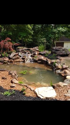 A new Water Garden just plugged in for the time. Pond Ideas, Garden Ideas, Koi Ponds, Water Gardens, Jackson, Nursery, Patio, Day Care, Yard