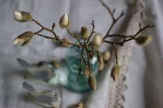 wiosna,magnoliahttps://www.facebook.com/pages/R%C4%99koczyny-Katarzyny/749456888458736?ref=hl