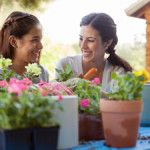 Got Arthritis? You Can Clean and Garden With Less Pain Use tools, tips and common sense