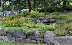 A rock garden is a great alternative to grass on a steep slope.