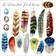 Note: This is a digital product, no physical product will be shipped These gorgeous original watercolor illustrations and are delivered to you as high resolution .png files which are white Watercolor Feather, Feather Painting, Feather Art, Watercolor Paintings, Bird Paintings, Tattoo Watercolor, Feather Drawing, Art Plastique, Watercolor Illustration