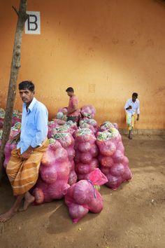 Day 3 Dambulla markets Sri Lanka.