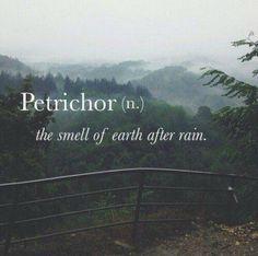 I LOVE this smell.. Me encanta el olor a tierra después de la lluvia. <3