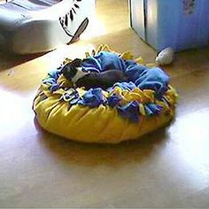 This no-sew dog bed looks so comfy & cuddly...want to make for Eva, Mia, Zeus, and Atheena