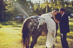 bride on horseback - would be cool until the dress was full of horse hair