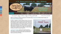 Thorne Ranch Simmental & Maine-Anjou Breeder in Oklahoma Website Designs, Cattle, Oklahoma, Ranch, Maine, Guest Ranch, Design Websites, Cow, Web Design