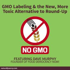 Dave Murphy founder of Food Democracy Now! joined Andrea Donsky and Lisa Davis on RadioMD to discuss the future of GMO labeling and one of the scariest news pieces of late - the new pesticide 2,4-D and the GMOs designed to withstand it. Listen and share: http://bit.ly/1ocRNb5 #GMOs #LabelGMOs #food Naturally Savvy