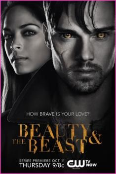 Beauty and the Beast TV Show this modern version well I am hooked