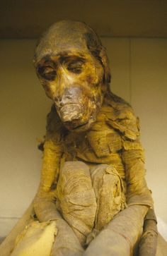 Mummified monkey, from Tomb nearby tomb of Amenhotep II found by Mr. Theodore M. Valley of the Kings, West Thebes. Now in the Egyptian Museum, Cairo. Ancient Egyptian Art, Ancient History, Ancient Astronaut Theory, Egypt Museum, Pyramids Egypt, Egyptian Mummies, Valley Of The Kings, Baboon, African Diaspora