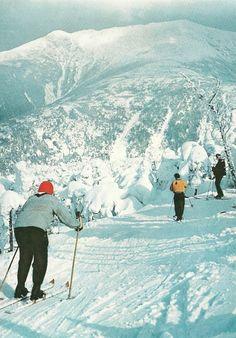 "vintagenatgeographic: "" Skiiers on Mount Lafayette, New Hampshire National Geographic Ski Vintage, Vintage Travel, Vintage Posters, Vintage Winter, S Ki Photo, Ski Card, National Geographic Photography, Adventure Aesthetic, Ski Posters"