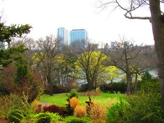 High Park (Toronto, Canada): Address, Phone Number, Free Attraction Reviews - TripAdvisor