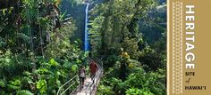 At Akaka Falls State Park, located along the northeastern Hamakua Coast, you can see two gorgeous waterfalls on one short hike. The pleasant 0.4-mile uphill hike will take you through a lush rainforest filled with wild orchids, bamboo groves and draping ferns.