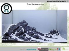 Hardscape Challenge 2015 - Die Ergebnisse (Galerie) - my-fish Cichlid Aquarium, Aquarium Aquascape, Aquarium Garden, Aquarium Terrarium, Aquarium Landscape, Nature Aquarium, Planted Aquarium, Aquarium Design, Aquarium Setup