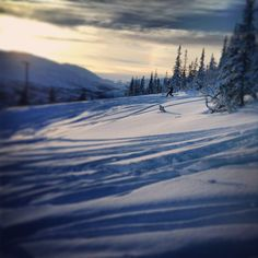 Telemark-skiing in Meråker Instagram photo by @sindrebl #travel #norway #meraker