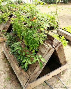 The Most Perfect Raised Garden Beds Made out of Pallets Pallet Planters & Compost Bins