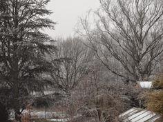 Natur und Leben: Wetter - Frostig