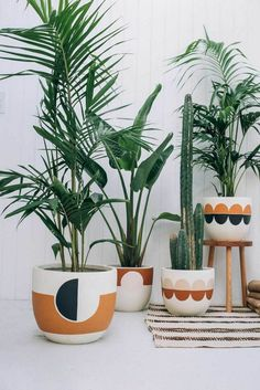 How Pop and Scott translate warmth, comfort, and playfulness into liveable design - cacti, ferns, house plants Hanging Plants, Potted Plants, Pots For Plants, Pop And Scott, Painted Plant Pots, Painted Flower Pots, Decoration Plante, Best Indoor Plants, Indoor Palms