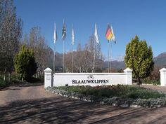 Blaauwklippen Wine Estate, Stellenbosch