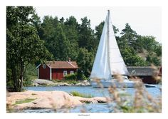 SWEDEN, white sails, red buildings and the sea